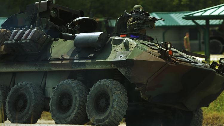 Gunner Up: 2nd LAR conducts combined weapons training