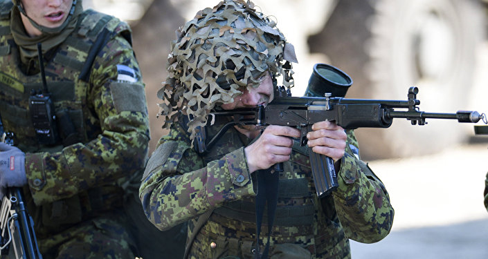 Estonia opens tender for supply 11 000 new assault rifles
