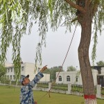 PLAAF's way of preventing bird hits using bird hunting falcons and next destroying monkeys 3